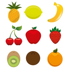 delicious food design vector image vector image