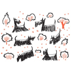 set with skotch terriers dogs vector image