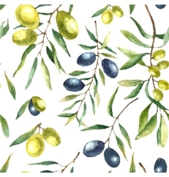 Watercolor olive branch background vector