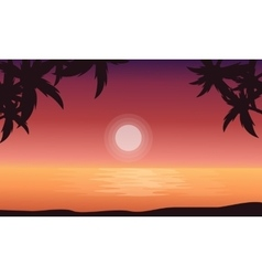 At sunrise beach scenery of silhouettes vector image