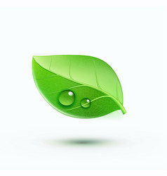Green environment concept icon vector