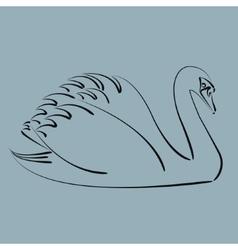 Black swan vector