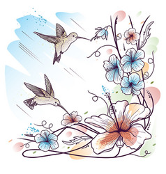 humming-birds and tropical flowers vector image