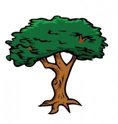 tree oak vector image