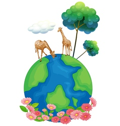 Two giraffes above the earth vector