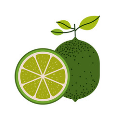 White background with one lemon fruit and lemon vector