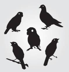 sparrows and pigeons vector image