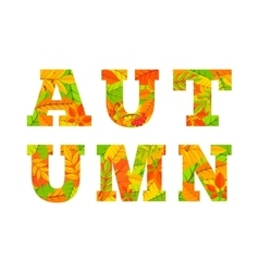 Autumn word from colorful leaves vector