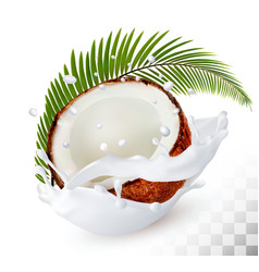 Coconut in a milk splash on a transparent vector