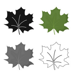 Maple leaf icon in cartoon style for web vector
