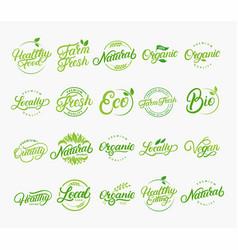 set of hand written lettering logos vector image