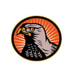 Goshawk head side view vector