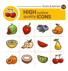 Fruits and berries stickers vector