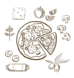 Pizza with ingredients sketch objects vector