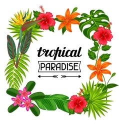 Tropical paradise frame with stylized leaves and vector image