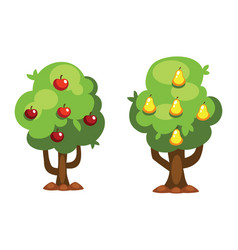cartoon pear and apple tree vector image vector image