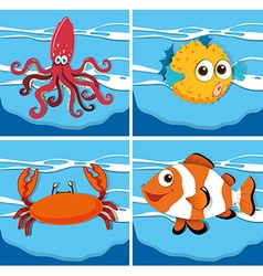 Different kind of sea animals vector image vector image