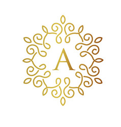 Letter a with elegant gold frame design vector