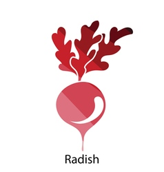 Radishes icon vector image vector image