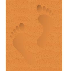 Trace on sand vector