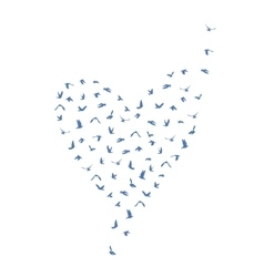 Doves and pigeons set heart shape for peace vector