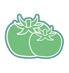 contour tomatoes organic healthy vegetable vector image