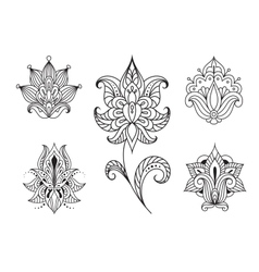 Persian floral paisley embellishments vector