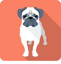 Dog pug icon flat design vector