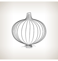 Onion in the Contours on a Light Background vector image