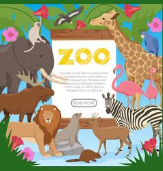 Zoo cartoon poster vector