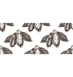 hand drawn seamless pattern with cocoa beans vector image
