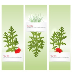 spring banners with poppy vector image