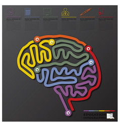 Brain shape education and graduation connection vector