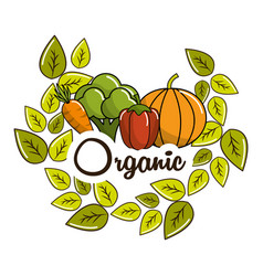 vegetarian food icon stock vector image vector image