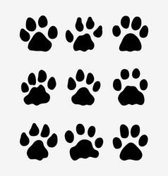 Footprints of lions vector