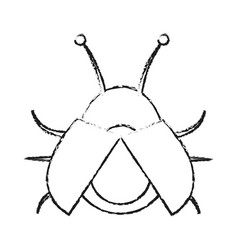 Blurred silhouette image beetle virus icon with vector