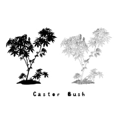 Castor Plant Contours Silhouette and Inscriptions vector image vector image