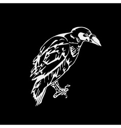 Hand-drawn pencil graphics bird raven crow rook vector