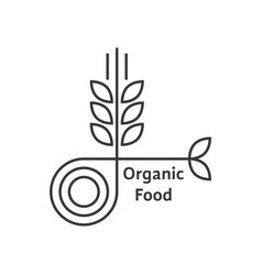 Organic food logo with thin line wheat ears vector