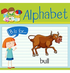 Flashcard letter B is for bull vector image vector image