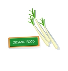Three plants of shallot fresh organic vegetables vector