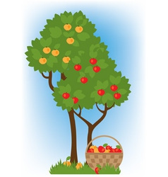 Apple trees vector