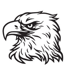 eagle head mascot drawing vector image vector image