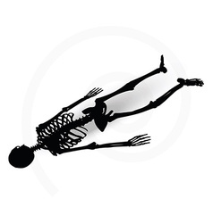 Skeleton silhouette in prone pose vector