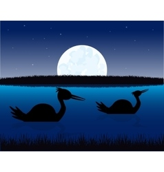 Night landscape with water and bird vector image
