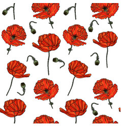 seamless floral pattern with poppy flowers vector image vector image