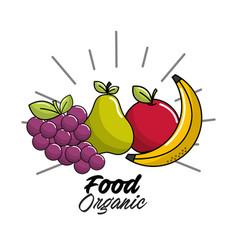 vegan food icon stock vector image vector image
