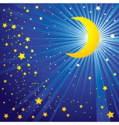 Moon on the night sky vector