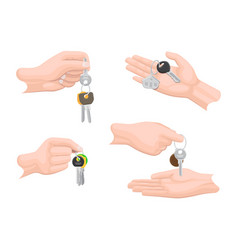 Hands passing keys to another human arms set vector