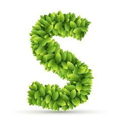 Letter s alphabet of green leaves vector